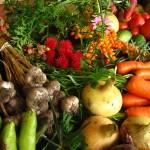 ファスティング・断食の準備食の重要性